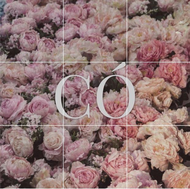 Miệt mài đăng 45 tấm ảnh hoa trong 5 ngày, cuối cùng Sơn Tùng M-TP cũng chốt tên ca khúc mới: Có Chắc Yêu Là Đây! - Ảnh 2.