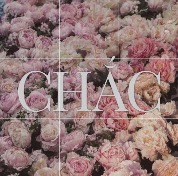 Miệt mài đăng 45 tấm ảnh hoa trong 5 ngày, cuối cùng Sơn Tùng M-TP cũng chốt tên ca khúc mới: Có Chắc Yêu Là Đây! - Ảnh 3.