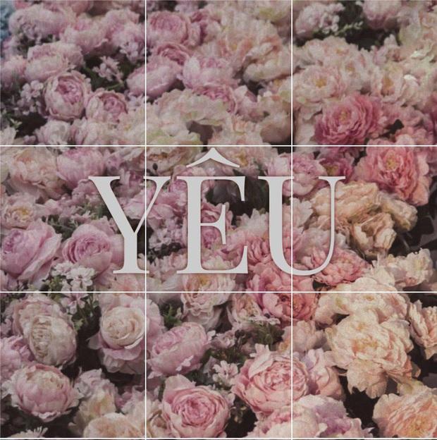 Miệt mài đăng 45 tấm ảnh hoa trong 5 ngày, cuối cùng Sơn Tùng M-TP cũng chốt tên ca khúc mới: Có Chắc Yêu Là Đây! - Ảnh 4.