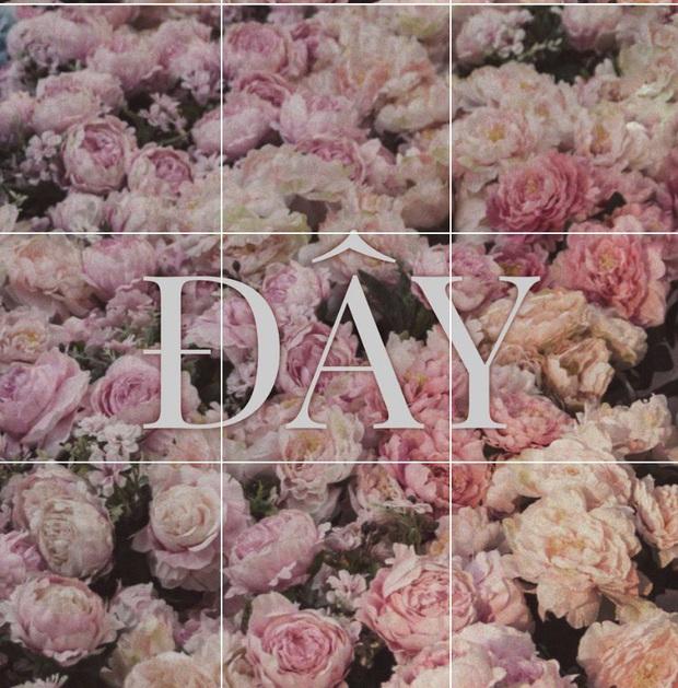 Miệt mài đăng 45 tấm ảnh hoa trong 5 ngày, cuối cùng Sơn Tùng M-TP cũng chốt tên ca khúc mới: Có Chắc Yêu Là Đây! - Ảnh 6.