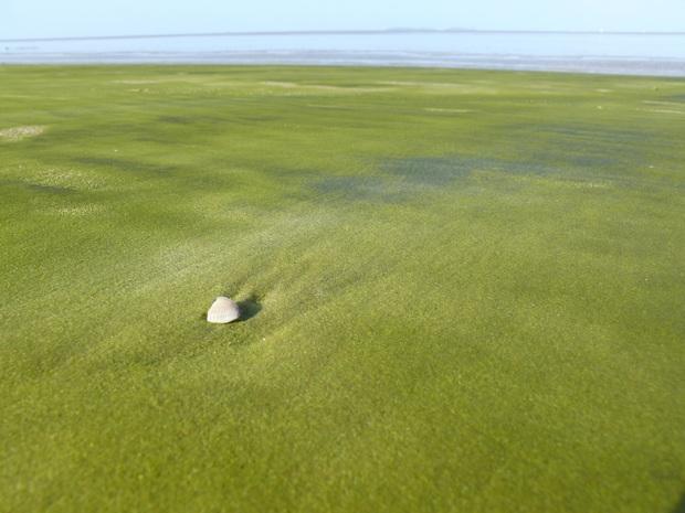 Không tin vào mắt mình trước 15 bãi biển độc nhất hành tinh, nơi nào cũng sở hữu vẻ đẹp ngỡ chỉ có trong trí tưởng tượng - Ảnh 6.