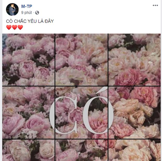 Miệt mài đăng 45 tấm ảnh hoa trong 5 ngày, cuối cùng Sơn Tùng M-TP cũng chốt tên ca khúc mới: Có Chắc Yêu Là Đây! - Ảnh 1.