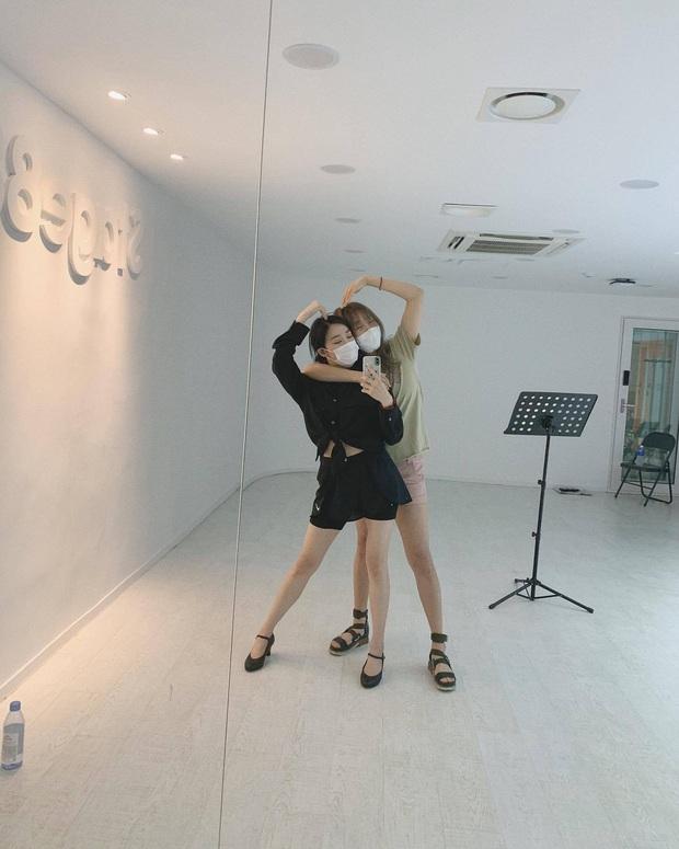 Giữa cơn bão BLACKPINK, MV của SNSD và 2NE1 âm thầm san bằng view nhau, fan 2 nhà nổi hứng mở cuộc đua stream làm funwar cho vui! - Ảnh 3.