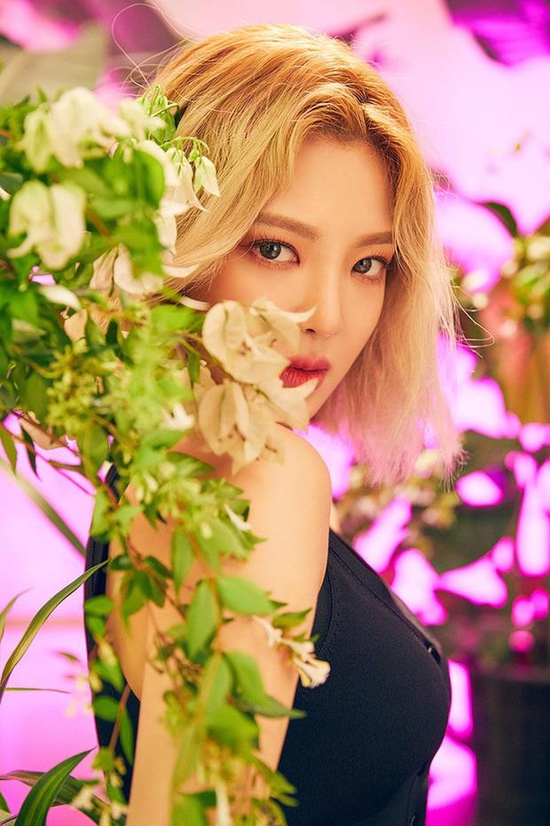 BLACKPINK còn chưa tung ra phiên bản dance practice, đàn chị Hyoyeon (SNSD) đã có ngay clip cover How You Like That xịn xò thế này rồi? - Ảnh 5.