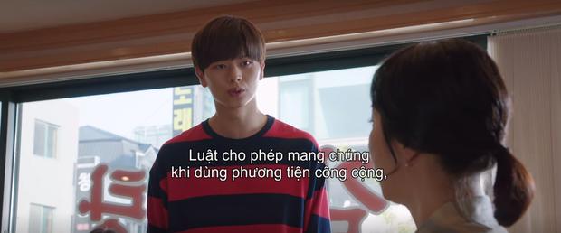 Mystic Pop-up Bar tập 5 siêu hot nhờ màn khẩu nghiệp của crush Sung Jae: Đến chó còn giúp người mà, hành động giống người chút đi! - Ảnh 2.