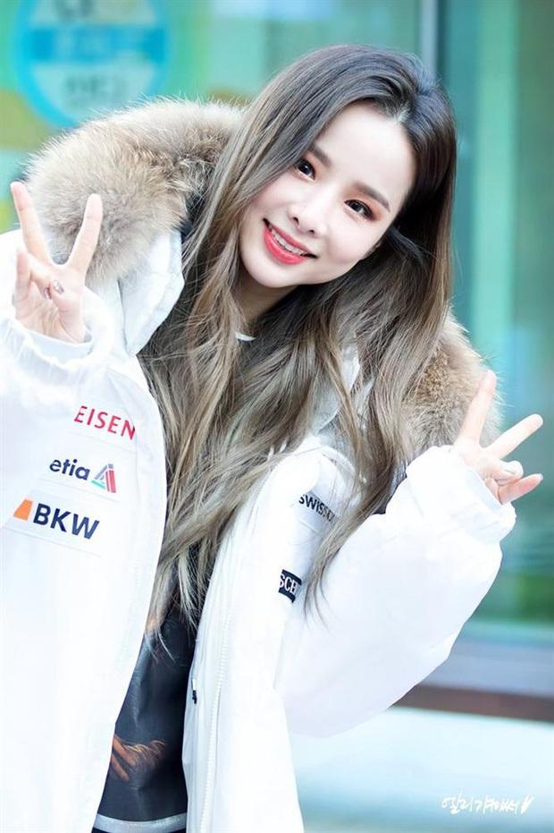 5 nữ idol debut vài lần trước khi nổi như cồn: Mỹ nhân từ cô giáo hóa thành viên của EXID, bất ngờ nhất là Sooyoung (SNSD) - Ảnh 6.