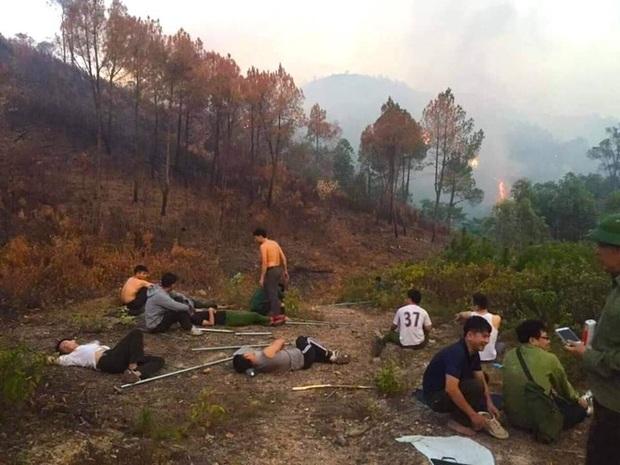Cảnh hoang tàn ở cánh rừng thông già sau nhiều đợt cháy hoành hành những ngày qua - Ảnh 3.