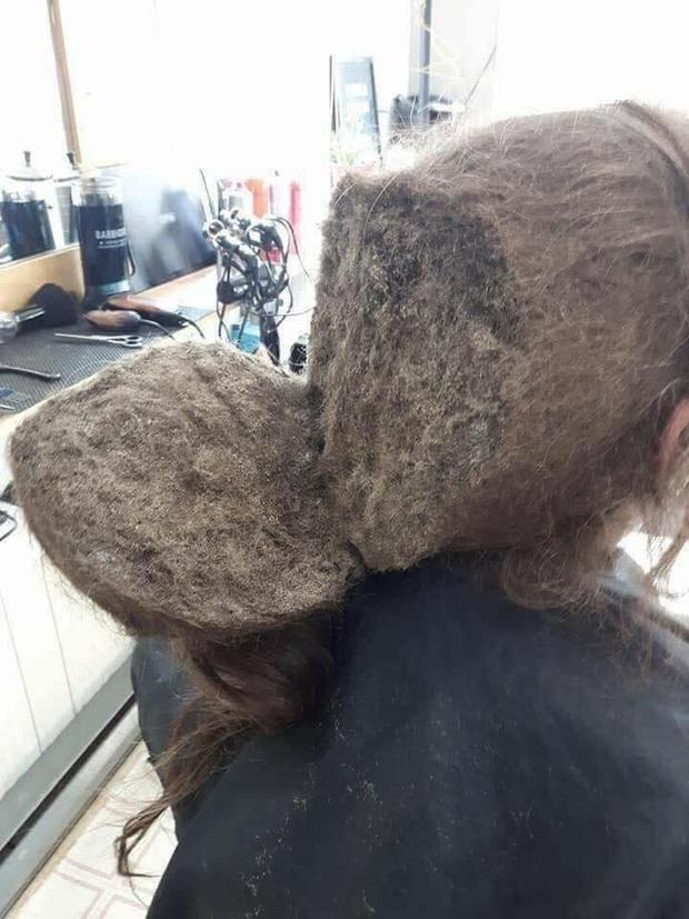 Mang mái tóc bết nhiều năm không cắt đến tiệm đòi phục hồi, cô gái gây choáng với tổ quạ trên đầu, hình ảnh sau tân trang khiến ai cũng ngỡ ngàng - Ảnh 2.