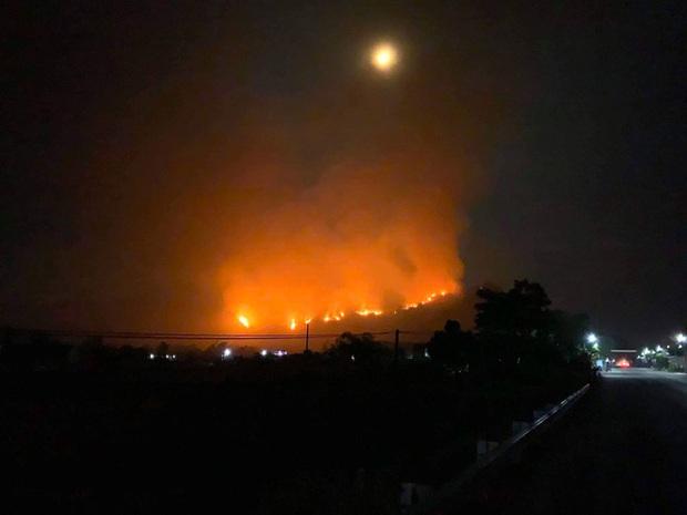 Cảnh hoang tàn ở cánh rừng thông già sau nhiều đợt cháy hoành hành những ngày qua - Ảnh 6.