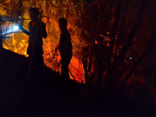 Cảnh hoang tàn ở cánh rừng thông già sau nhiều đợt cháy hoành hành những ngày qua - Ảnh 10.