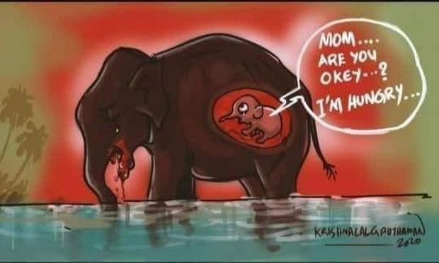 Xót thương voi mẹ mang thai chết vì ăn phải dứa nhét thuốc nổ, cộng đồng mạng chia sẻ những bức vẽ tưởng niệm đầy cảm xúc - Ảnh 1.