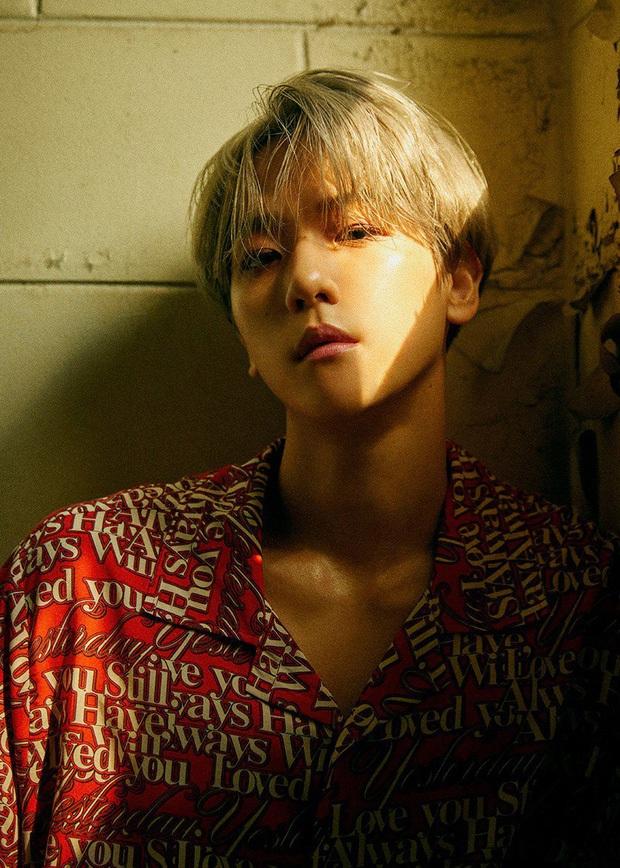 Chanyeol và Baekhuyn (EXO) đúng thánh spoil: Tự thông báo comeback, bật cho fan nghe nửa album mặc kệ SM khiến fan cười ngất - Ảnh 8.