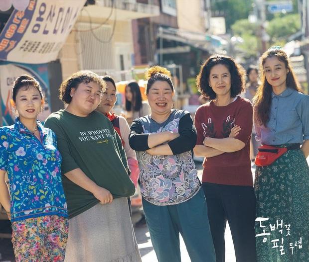 Hậu Beaksang 2020, xem Khi Cây Trà Trổ Hoa để thấy mọi drama thường nhật được tinh giản qua lăng kính đầy tình yêu - Ảnh 5.