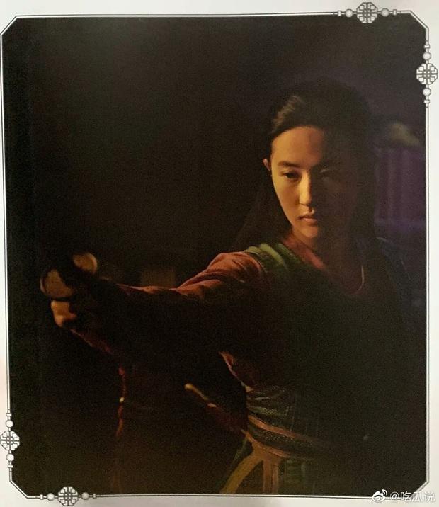 Mulan Lưu Diệc Phi thần thái ngút ngàn trong bộ ảnh mới, netizen phấn khích: Ai chê chị đơ ra đây xem nào! - Ảnh 14.