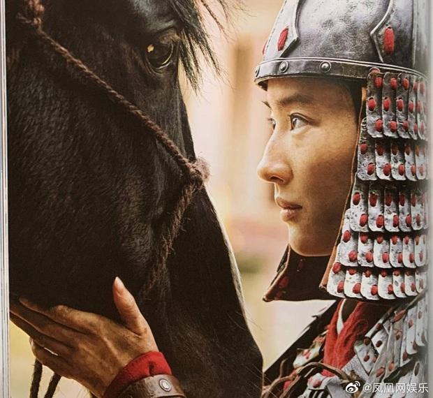Mulan Lưu Diệc Phi thần thái ngút ngàn trong bộ ảnh mới, netizen phấn khích: Ai chê chị đơ ra đây xem nào! - Ảnh 2.