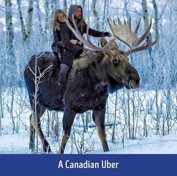 Canada có những điều thật lạ: Từ nhà tù dành cho gấu Bắc Cực đến muôn vàn kiểu thời tiết hỡi ơi không tìm được ở đâu khác - Ảnh 15.