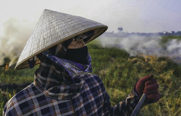 Người dân Hà Nội đốt rơm rạ khói bay mù mịt giữa cái nóng gần 40 độ, khiến không khí ngày càng ô nhiễm - Ảnh 4.