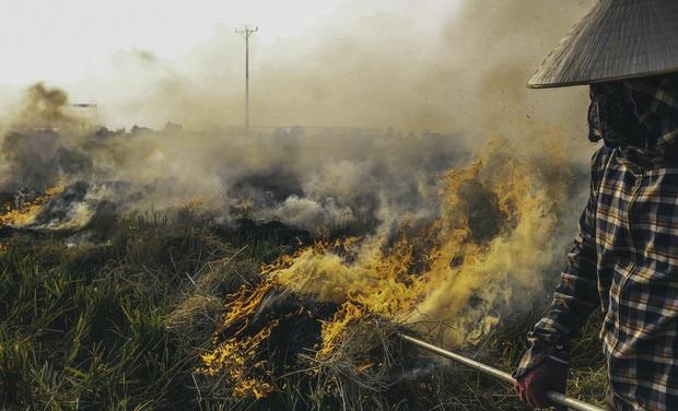 Người dân Hà Nội đốt rơm rạ khói bay mù mịt giữa cái nóng gần 40 độ, khiến không khí ngày càng ô nhiễm - Ảnh 5.