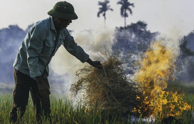 Người dân Hà Nội đốt rơm rạ khói bay mù mịt giữa cái nóng gần 40 độ, khiến không khí ngày càng ô nhiễm - Ảnh 1.