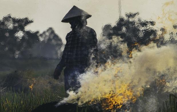 Người dân Hà Nội đốt rơm rạ khói bay mù mịt giữa cái nóng gần 40 độ, khiến không khí ngày càng ô nhiễm - Ảnh 2.