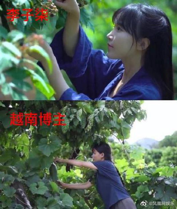 """Nghi vấn một kênh Youtube ẩm thực của Việt Nam """"đạo nhái"""" Lý Tử Thất bị netizen Trung Quốc lên án gay gắt, lọt hẳn top 1 tìm kiếm weibo - Ảnh 7."""