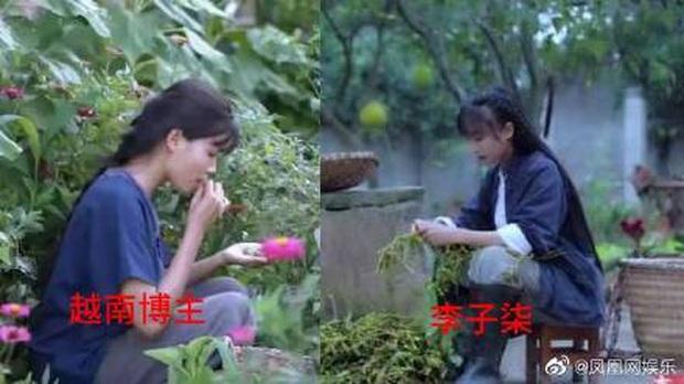 """Nghi vấn một kênh Youtube ẩm thực của Việt Nam """"đạo nhái"""" Lý Tử Thất bị netizen Trung Quốc lên án gay gắt, lọt hẳn top 1 tìm kiếm weibo - Ảnh 6."""