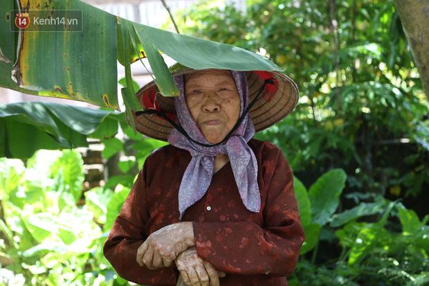 """Cụ bà gần 90 tuổi ở Hà Nội hàng ngày đi cấy, đan lưới làm thú vui tao nhã: """"Các cháu chưa chắc đã khoẻ bằng tôi"""" - Ảnh 5."""