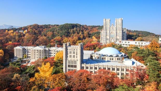 Khám phá trường đại học đẹp nhất Hàn Quốc, là nơi hàng loạt idol nổi tiếng theo học như G-Dragon, EXO, Han Ga In... - Ảnh 4.