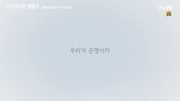 Điên Thì Có Sao dính phốt xài chùa câu nói nổi tiếng của Jonghyun (SHINee), fan bức xúc dùm cố nghệ sĩ - Ảnh 2.