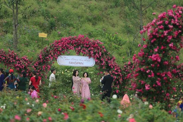 Dù chưa mở cửa, Việt Nam vẫn đón gần 9.000 lượt khách quốc tế trong tháng 6  - Ảnh 2.