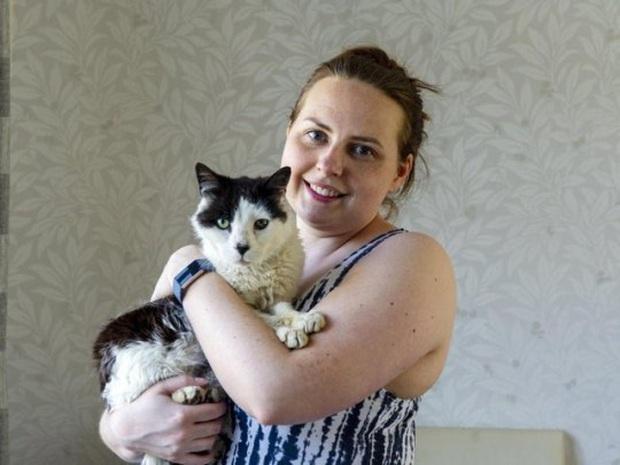 Đi lạc 12 năm trời, chú mèo bỗng may mắn tìm được chủ cũ và cuộc hội ngộ đầy bất ngờ gây xúc động - Ảnh 3.