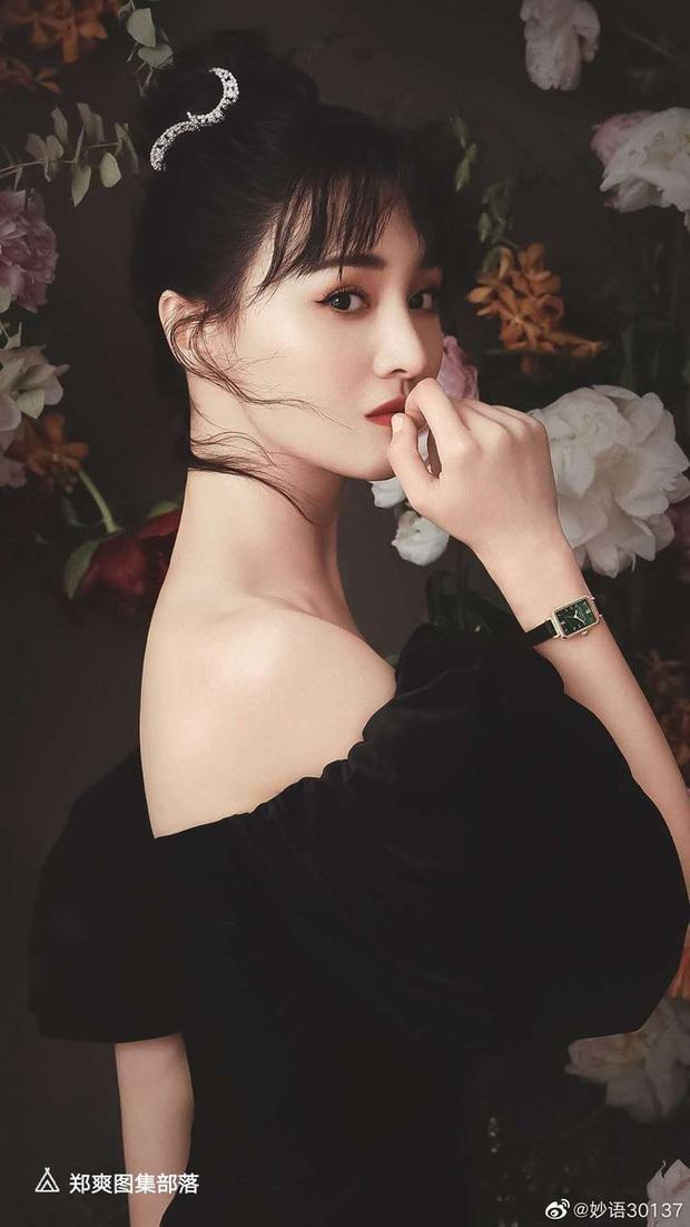 Rộ tin Trịnh Sảng bỏ vai Hoa Thiên Cốt để chiều lòng fan, NSX tìm được người thay thế lập tức - Ảnh 1.