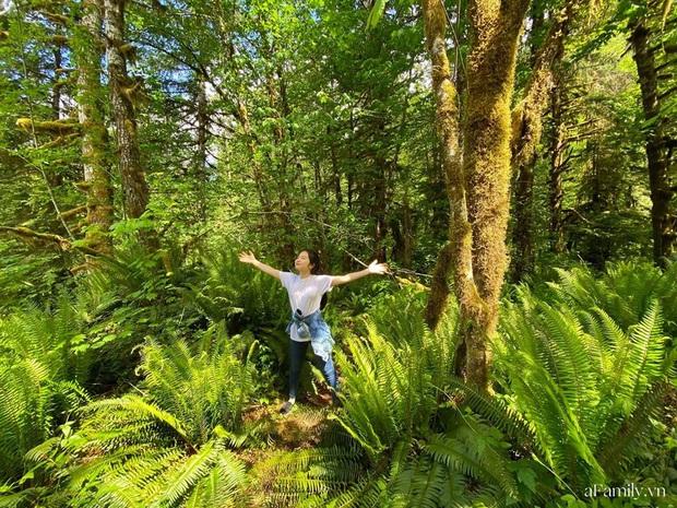 Cặp vợ Việt chồng Mỹ kể lại hành trình tự lái xe đi du lịch khám phá khắp núi rừng nước Mỹ, vào vườn trái cây đẹp như trên phim trong chuỗi ngày tránh dịch Covid-19 - Ảnh 9.
