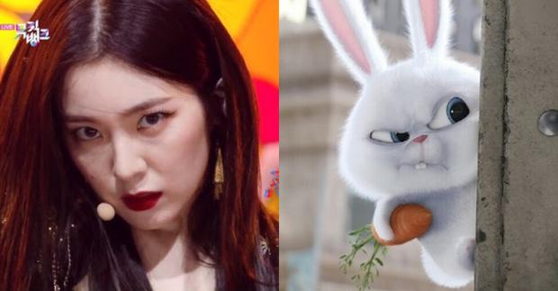 Thần thái ending với ánh mắt như dao cau của Irene (Red Velvet) tưởng đâu dọa được fan, ai ngờ lại bị so sánh quạo như... chú cún - Ảnh 8.