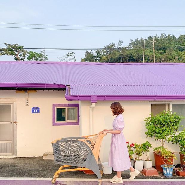 """Một hòn đảo kỳ lạ vừa xuất hiện ở Hàn Quốc đã tạo cơn bão check-in trên MXH: Tất cả mọi thứ đều nhuốm màu """"tím lịm tìm sim"""" - Ảnh 26."""