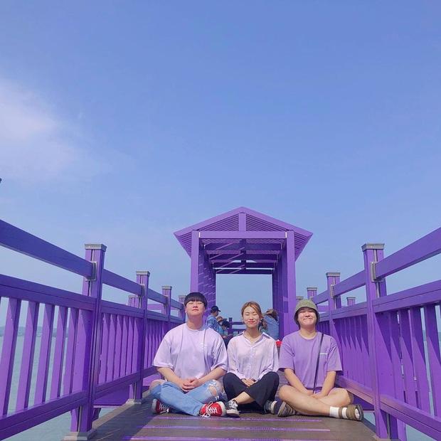 """Một hòn đảo kỳ lạ vừa xuất hiện ở Hàn Quốc đã tạo cơn bão check-in trên MXH: Tất cả mọi thứ đều nhuốm màu """"tím lịm tìm sim"""" - Ảnh 10."""