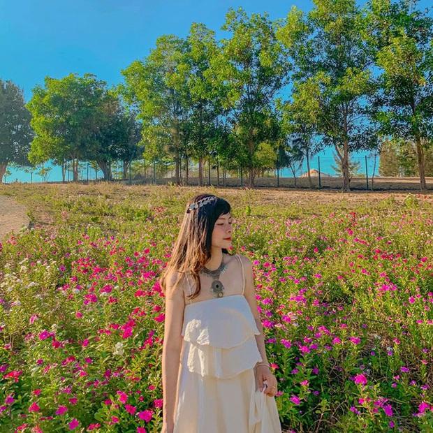 Khám phá loạt điểm đến đẹp hút hồn ở Ninh Thuận trong 3N2Đ: Nắng, gió và thiên nhiên hoang sơ khiến du khách quên lối về - Ảnh 3.