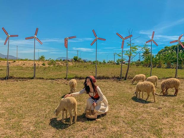Khám phá loạt điểm đến đẹp hút hồn ở Ninh Thuận trong 3N2Đ: Nắng, gió và thiên nhiên hoang sơ khiến du khách quên lối về - Ảnh 5.