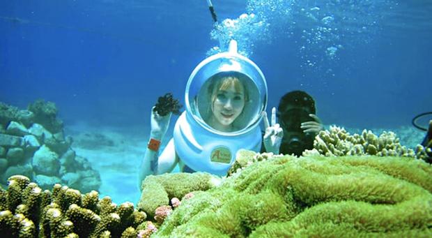 Nghe nói vịnh san hô ở Nha Trang đẹp lắm, mà nay chỉ cần chưa đến 1 triệu đồng/người là có thể tản bộ thảnh thơi ngắm đáy đại dương kỳ bí rồi - Ảnh 5.