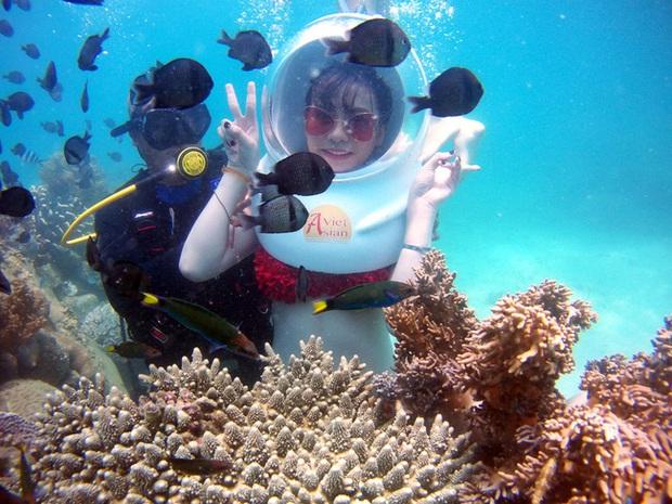 Nghe nói vịnh san hô ở Nha Trang đẹp lắm, mà nay chỉ cần chưa đến 1 triệu đồng/người là có thể tản bộ thảnh thơi ngắm đáy đại dương kỳ bí rồi - Ảnh 6.