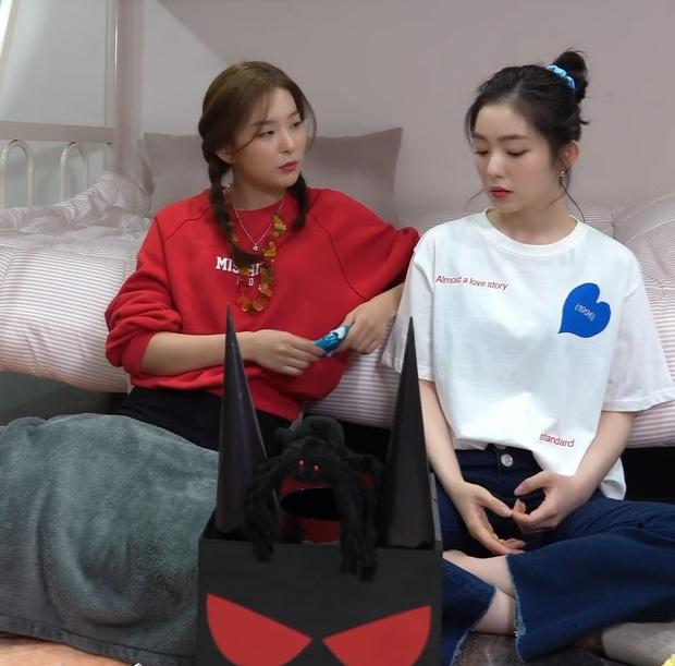 Irene cảm thấy tự ti khi hoạt động solo đếm trên đầu ngón tay, fan phẫn nộ vì SM đối xử bất công giữa các thành viên Red Velvet - Ảnh 2.