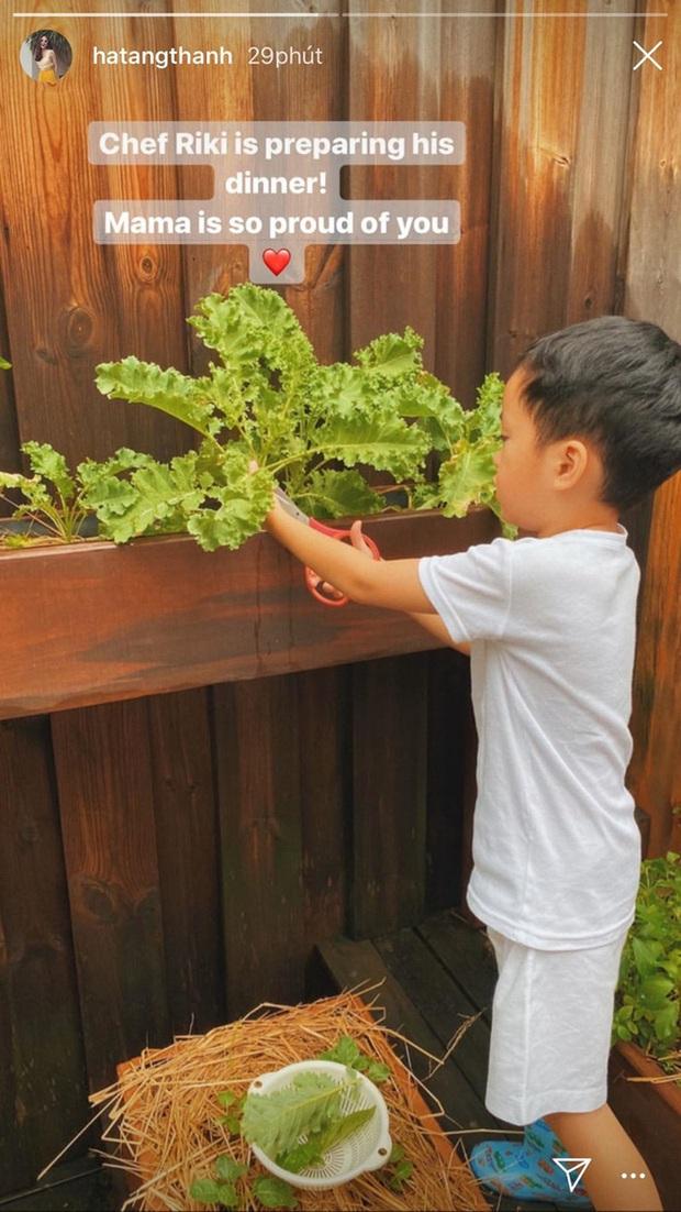 Ở biệt thự triệu đô nhưng nhóc tỳ nhà Hà Tăng vẫn giản dị theo mẹ trồng rau muống: Hạnh phúc là đây chứ đâu! - Ảnh 4.