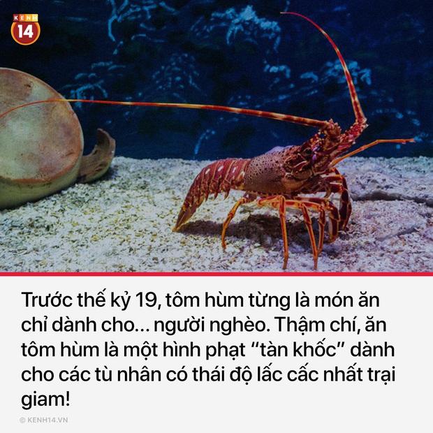 12 sự thật bất thường sẽ khiến bạn ngạc nhiên một chút về thế giới bình thường quanh ta - Ảnh 5.