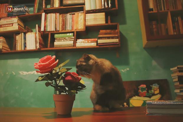 Gặp ông chủ quán uống cà phê trả tiền bằng sách độc nhất Sài Gòn: Mang 1 quyển sách tặng quán, nhận một phần nước bất kỳ - Ảnh 6.