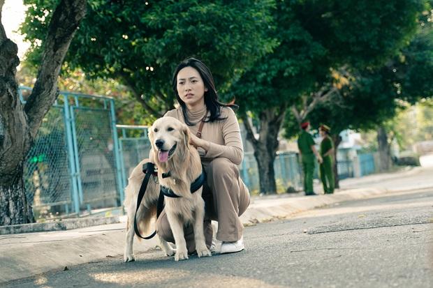 Bằng Chứng Vô Hình: Phim điện ảnh Việt chỉn chu nhất hiện tại vẫn chưa đạt kì vọng doanh thu - Ảnh 3.