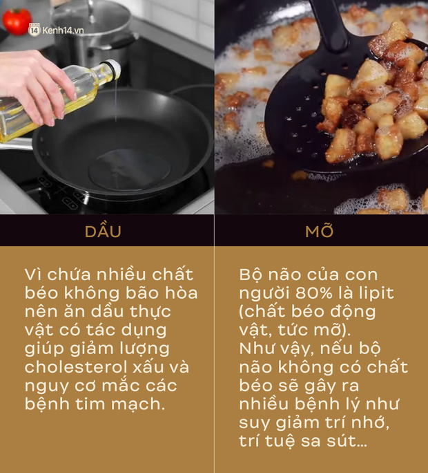 TS Từ Ngữ - Tổng Thư ký Hội Dinh dưỡng Việt Nam: Nhiều người đang hiểu lầm về vai trò của mỡ và không ăn mỡ - Ảnh 2.