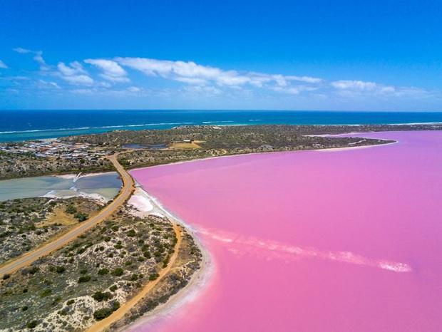 18 bức ảnh chứng minh thiên nhiên nước Úc là cả một thế giới đáng sợ đến rợn người - Ảnh 3.