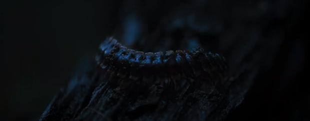 Nổi da gà với teaser trailer 2 của Tà Năng Phan Dũng: Khi kẻ đi lạc tuyệt vọng tìm tới cái chết? - Ảnh 11.