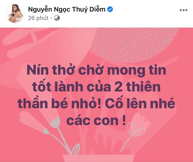 Ốc Thanh Vân, H'Hen Niê và dàn sao Vbiz đồng loạt dành lời chúc cho ekip thực hiện ca tách 2 bé song sinh dính liền - Ảnh 3.