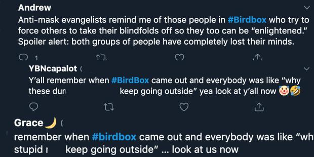 Bird Box xác nhận phần 2, khán giả rủ Sandra Bullock đeo thêm khẩu trang cho hợp mùa dịch - Ảnh 6.